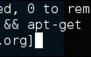 Кали линукс онлайн