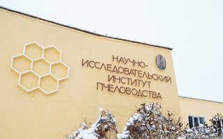 Курсы пчеловодов в москве