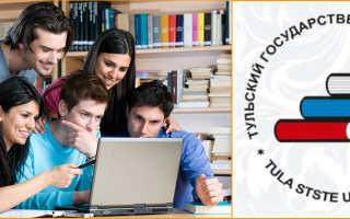 Тулгу дистанционное обучение интернет институт