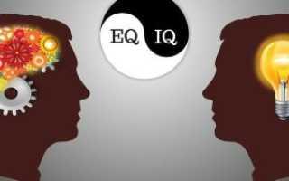 Тренинг эмоциональный интеллект руководителя