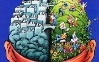 Детская нейропсихология обучение