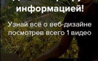Обучение на веб дизайнера в москве